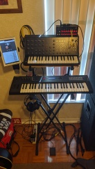 Synthesizers - Korg MS-20 analog, Korg SQ-1 sequencer, Yamaha MX49 digital